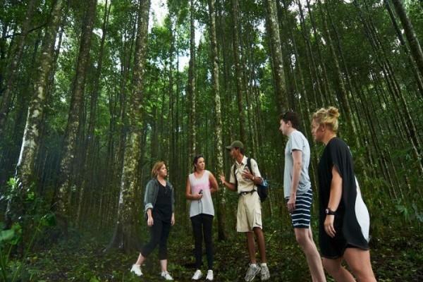 bali-jungle-trekking-bali-tour-packages-bali-tour-organizer