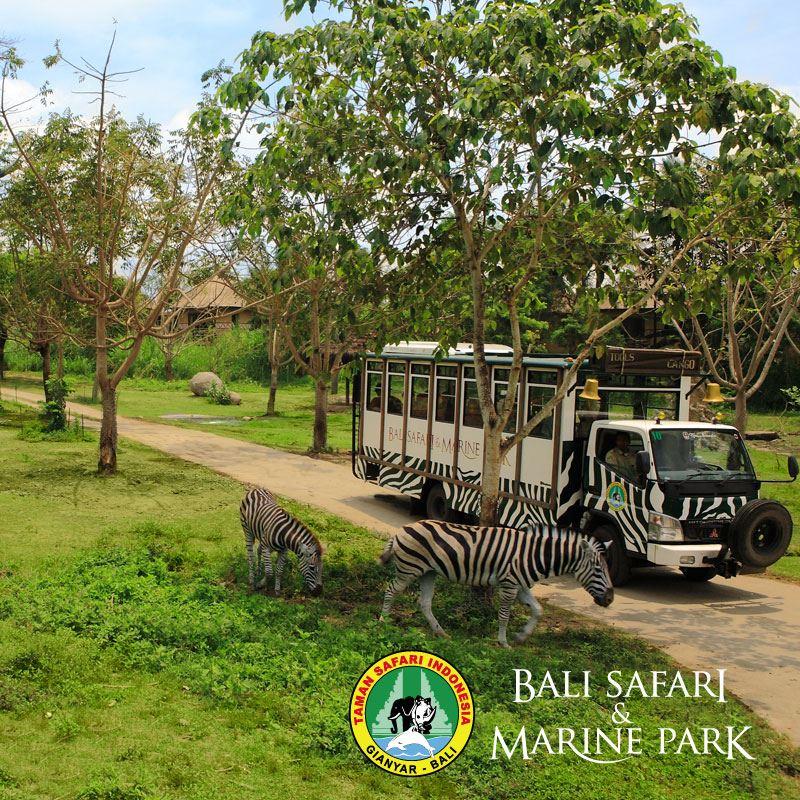 bali-safari-marine-park